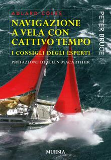 Festivalshakespeare.it Navigazione a vela con cattivo tempo. I consigli degli esperti Image