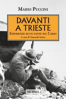 Davanti a Trieste. Esperienze di un fante sul Carso.pdf