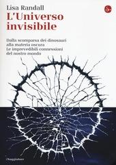 L' universo invisibile. Dalla scomparsa dei dinosauri alla materia oscura. Le imprevedibili connessioni del nostro mondo