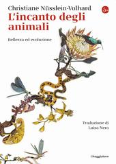 Copertina  L'incanto degli animali : bellezza ed evoluzione