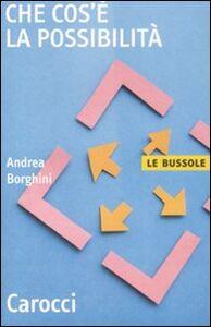 Libro Che cos'è la possibilità Andrea Borghini