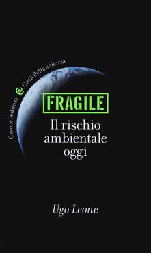 Vitalitart.it Fragile. Il rischio ambientale oggi Image