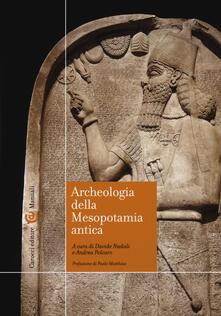 Archeologia della Mesopotamia antica - copertina