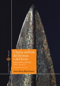 L' L' Italia nell'età del bronzo e del ferro. Dalle palafitte a Romolo (2200-700 a. C.). Con aggiornamento online - Bietti Sestieri Anna M. - wuz.it