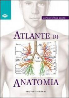 Atomicabionda-ilfilm.it Atlante di anatomia Image