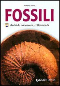 Libro Fossili Roberto Zorzin