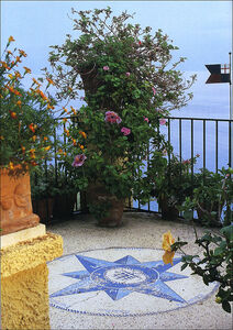 Libro Il giardino in balconi e terrazzi Eliana Ferioli 3