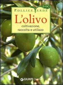 Grandtoureventi.it L' olivo. Coltivazione, raccolta e utilizzo. Ediz. illustrata Image