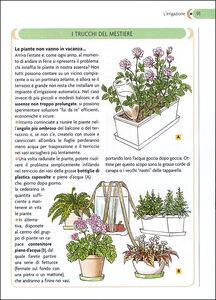 Foto Cover di Il giardino in balconi e terrazzi, Libro di Eliana Ferioli, edito da Giunti Demetra 1