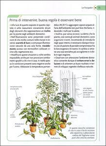 Foto Cover di Piante in salute. Il pronto soccorso verde, Libro di Lorena Lombroso,Simona Pareschi, edito da Giunti Demetra 1