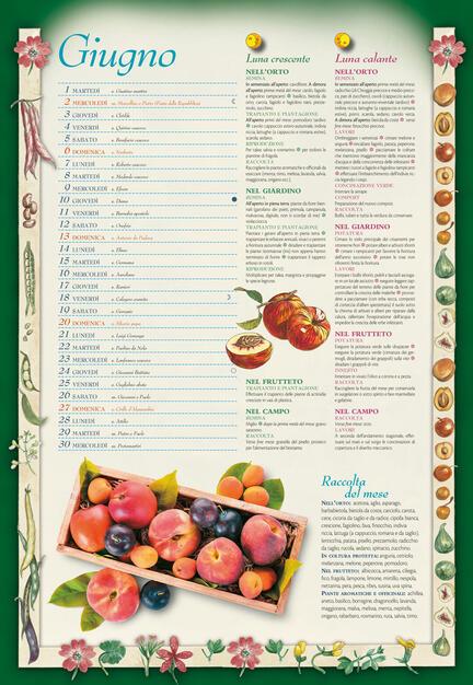 Calendario Demetra 2021 Calendario lunare 2021   Libro   Demetra   | IBS