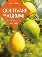 Coltivare gli agrumi in piena terra e in vaso