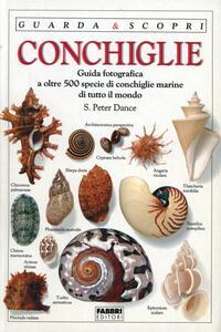 Conchiglie - Peter Dance - copertina