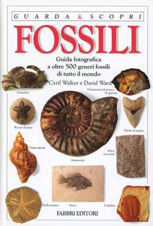 Chievoveronavalpo.it Fossili Image