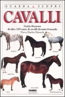Vitalitart.it Cavalli Image