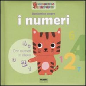 Beniamino scopre i numeri