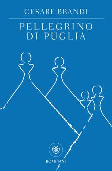 Camfeed.it Pellegrino di Puglia Image
