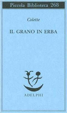 Chievoveronavalpo.it Il grano in erba Image