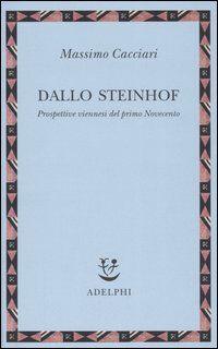Dallo Steinhof. Prospettive viennesi del primo Novecento