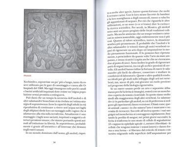 Il libro degli esseri a malapena immaginabili - Caspar Henderson - 4