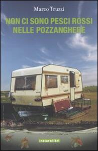 Non ci sono pesci rossi nelle pozzanghere - Marco Truzzi - copertina