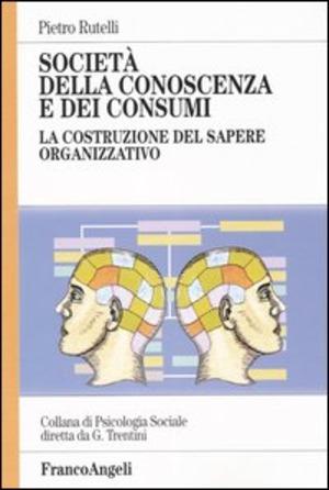 Società della conoscenza e dei consumi. La costruzione del sapere organizzativo