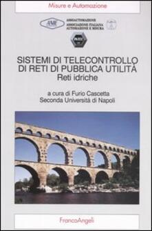 Sistemi di telecontrollo di reti di pubblica utilità. Reti idriche
