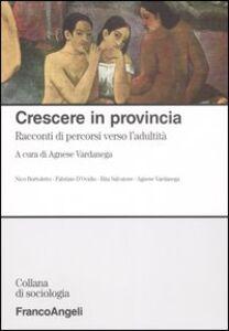 Foto Cover di Crescere in provincia. Racconti di percorsi verso l'adultità, Libro di  edito da Franco Angeli