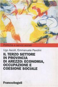 Libro Il terzo settore in provincia di Arezzo. Economia, occupazione e coesione sociale Ugo Ascoli , Emmanuele Pavolini