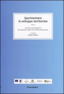 Sperimentare lo sviluppo territoriale. Un bilancio dell'attuazione del programma Leader Plus nell'Alto Oltrepò pavese - copertina