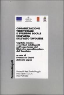 Organizzazione territoriale e sviluppo locale nell'area dell'alto Tavoliere - copertina