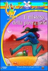 Libro Il mistero della pietra nera Marco Tomatis