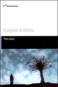 Il segreto di Didimo - Pietro Guida - copertina