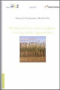 Bio-Ethanol from sweet sorghum. A review of the opportunity
