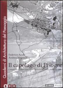 Libro Il capolago di Pisogne Federico Acuto Andrea Negrisoli