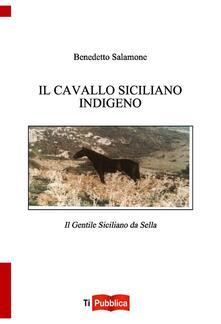 Vitalitart.it Il cavallo indigeno siciliano. Il gentile siciliano da sella Image