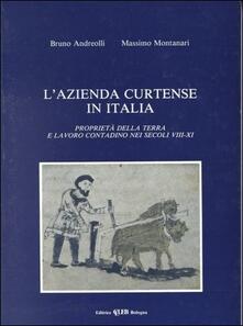 Cocktaillab.it L' azienda curtense in Italia. Proprietà della terra e lavoro contadino nei secoli VIII-XI Image