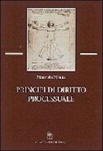 Principi di diritto processuale