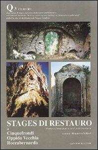 Stages di restauro. Quaderno. Vol. 3