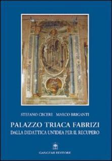 Palazzo Triaca Fabrizi. Dalla didattica un'idea per il recupero - Stefano Cecere,Marco Briganti - copertina