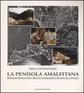 La penisola amalfitana. Proposta metodologica per un progetto di valorizzazione e diffusione della naturalità - Paola Giannattasio - copertina