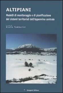 Altipiani. Modelli di monitoraggio e di pianificazione dei sistemi territoriali dell'Appennino centrale - copertina