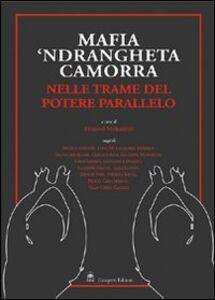 Libro Mafia, 'ndrangheta e camorra nelle trame del potere