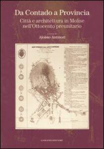 Libro Da Contado a Provincia. Città e architettura in Molise nell'Ottocento preunitario