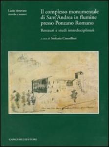 Libro Il complesso monumentale di Sant'Andrea in Flumine presso Ponzano Romano. Restauri e studi interdisciplinari. Con CD-ROM