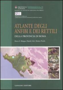 Atlante degli anfibi e rettili della provincia di Roma - copertina