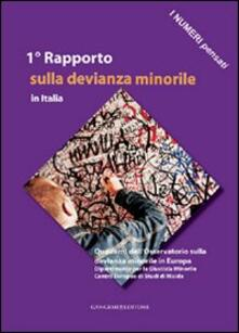 I numeri pensati. 1° Rapporto sulla devianza minorile in Italia - copertina