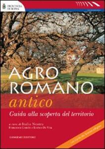 Agro romano antico. Guida alla scoperta del territorio - Enrico De Vita,Francesca Condò - copertina