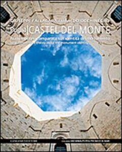 Libro Castel del Monte. Nuova ipotesi comparata sull'identità del monumento. Ediz. italiana e inglese Giuseppe Fallacara , Ubaldo Occhinegro