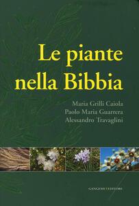 Le piante nella Bibbia - Maria Grilli Caiola,Paolo M. Guarrera,Alessandro Travaglini - copertina